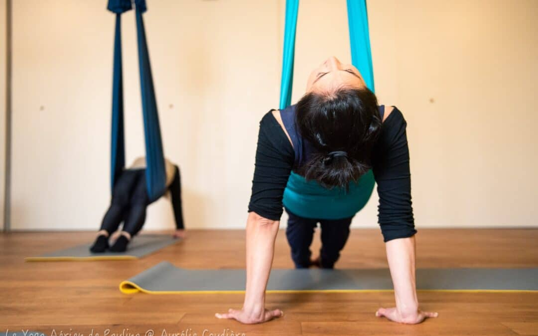 Yoga Aérien – Vitalité et mobilité de la colonne vertébrale – 16 nov 17h-18h30