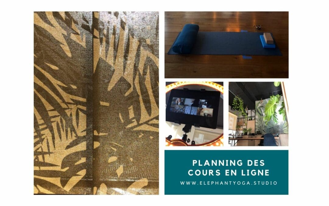 cours en ligne elephant yoga studio nantes